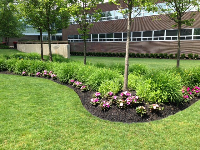 Five commercial landscape ideas to enhance your property for Commercial landscape design